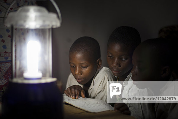 A group of boys read their homework by the light of a solar lantern  Tanzania  East Africa  Africa