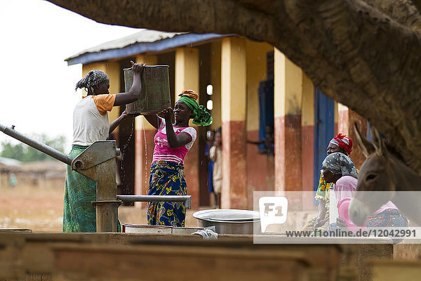 Women collecting water from one of the community water pumps in Tinguri  northern Ghana  West Africa  Africa