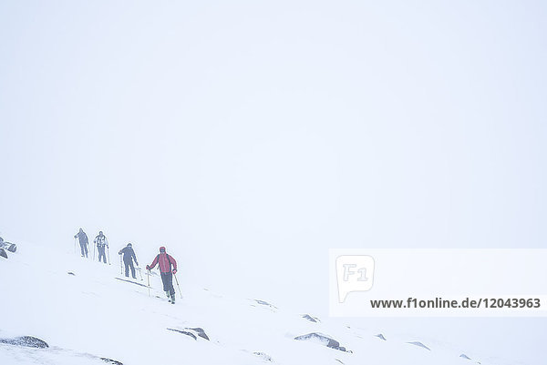 Ski touring in a snow blizzard white out at CairnGorm Mountain Ski Resort  Cairngorms National Park  Scotland  United Kingdom  Europe
