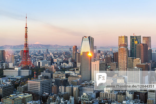 Elevated evening view of the city skyline and iconic Tokyo Tower  Tokyo  Japan  Asia