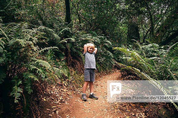 Boy in forest looking at camera smiling  Fairfax  California  USA  North America