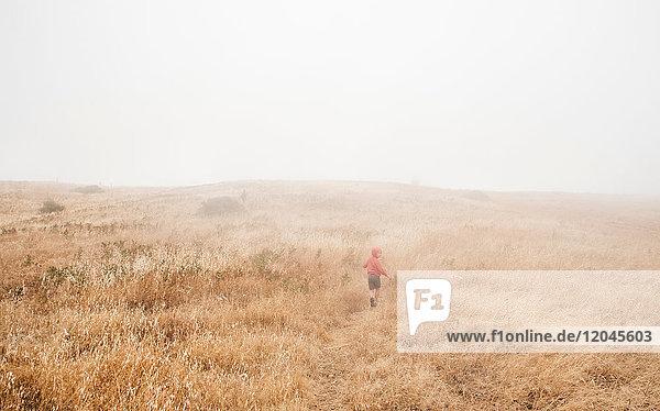 Boy in foggy field landscape  Fairfax  California  USA  North America