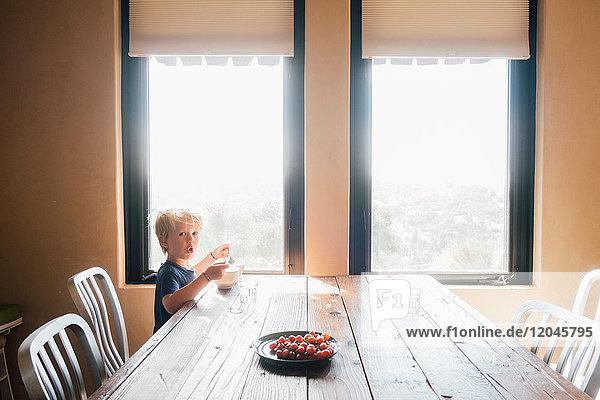 Boy sitting at dining table looking at camera  surprised  Fairfax  California  USA  North America
