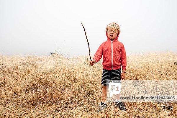 Boy in field holding stick  Fairfax  California  USA  North America