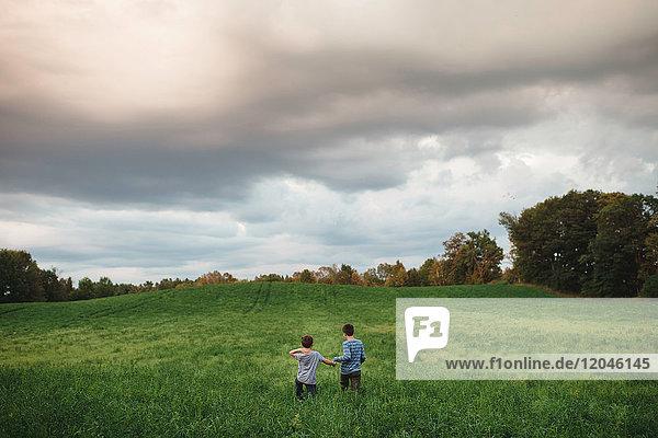 Brothers walking on green grassy field