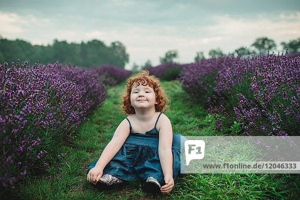 Toddler between rows of lavender  Campbellcroft  Canada