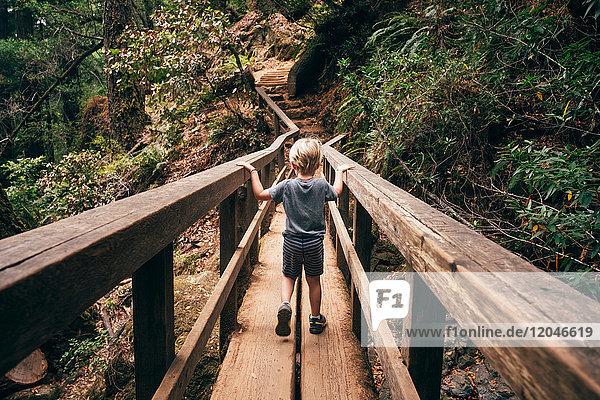 Rear view of boy crossing pedestrian bridge  Fairfax  California  USA  North America