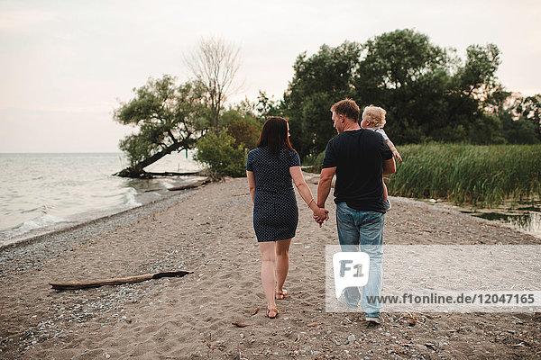 Rückansicht eines Paares  das mit einem männlichen Kleinkind am Strand spazieren geht  Ontariosee  Kanada