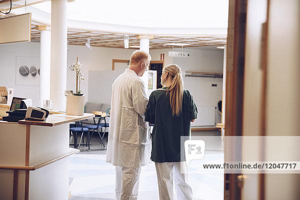 Rückansicht der Krankenschwester und des Arztes  die in der Lobby des Krankenhauses diskutieren.
