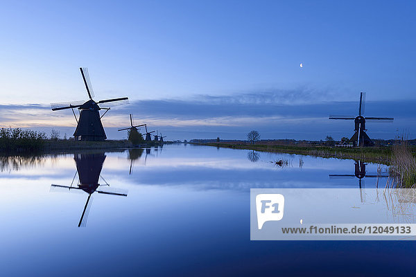 Windmills at Dawn with Moon  Kinderdijk  South Holland  Netherlands