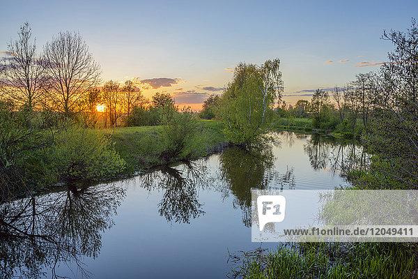 Nesselbachzuleiter at Sunset in Spring  Muhr am See  Weissenburg-Gunzenhausen  Bavaria  Germany