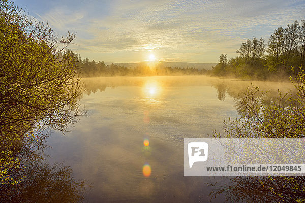 Bright sun reflected in lake with morning mist at sunrise in Mondfeld  Wertheim in Baden-Wurttemberg  Germany
