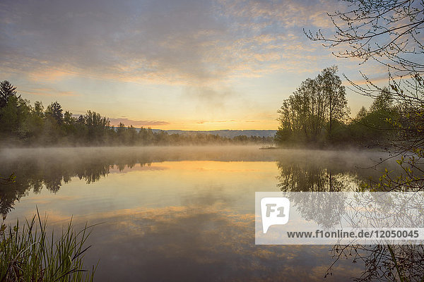 Pastel sky reflected in lake with morning mist at dawn in Mondfeld  Wertheim in Baden-Wurttemberg  Germany