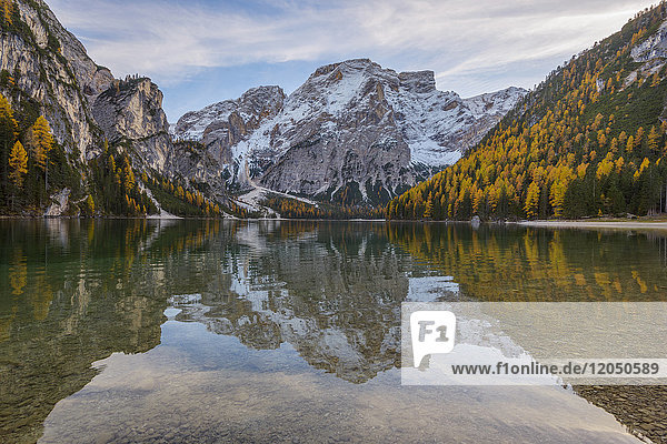 Croda del Becco (Seekofel) reflected in the still waters of Braies Lake in autumn in the Prags Dolomites  South Tyrol  Italy