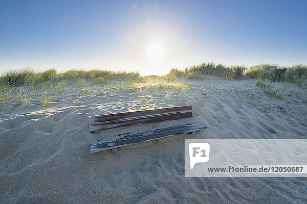 Bench Buried in Sand Dune  Domburg  North Sea  Zeeland  Netherlands