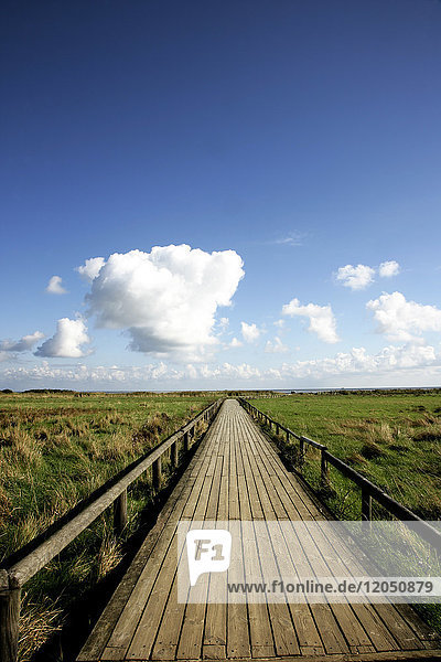 Boardwalk  Sylt  Germany