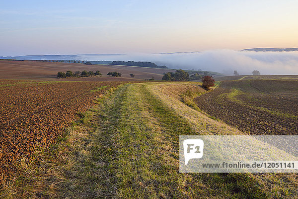 Countryside with path and morning mist over fields at Grossheubach in Bavaria  Germany