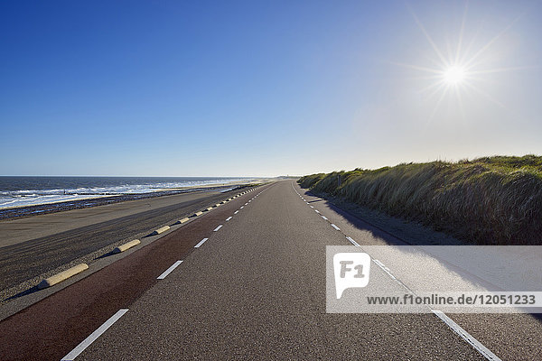 Dike Road with Sun and North Sea  Westkapelle  Zeeland  Netherlands
