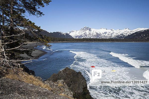 Surfers Along The Kenai Peninsula Outer Coast  Southcentral Alaska  USA