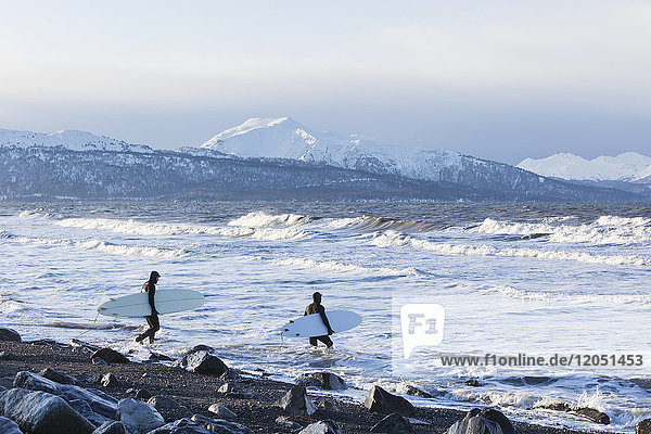 Surfers Entering Kachemak Bay Along Homer Spit  Southcentral Alaska  USA