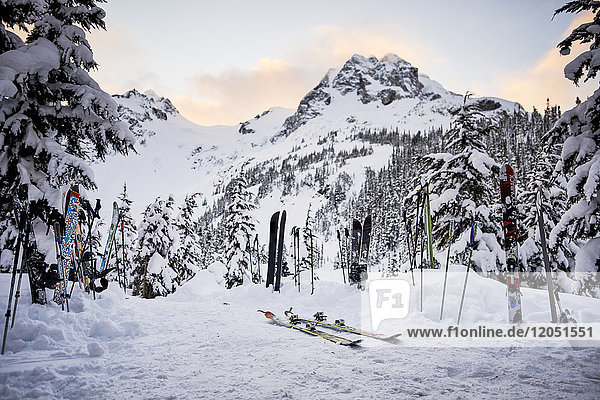 Pairs Of Skis And Poles In The Snow In The Backcountry In Winter; British Columbia  Canada