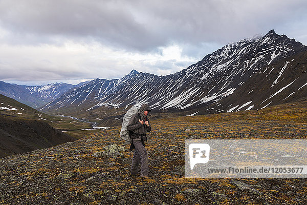 A backpacker ascends a pass during rainy weather in the Brooks Range; Alaska  United States of America