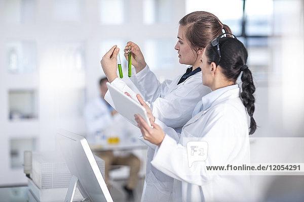Zwei Wissenschaftler  die gemeinsam im Labor an Reagenzgläsern arbeiten
