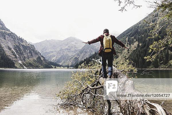 Österreich  Tirol  Alpen  Wanderer beim Balancieren auf Baumstamm am Bergsee