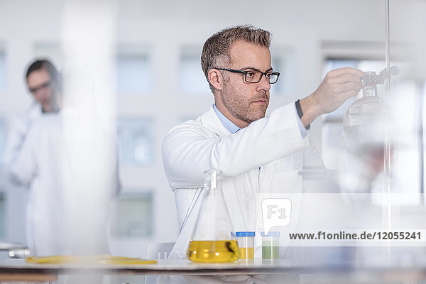 Scientist working in lab putting flask in clamp