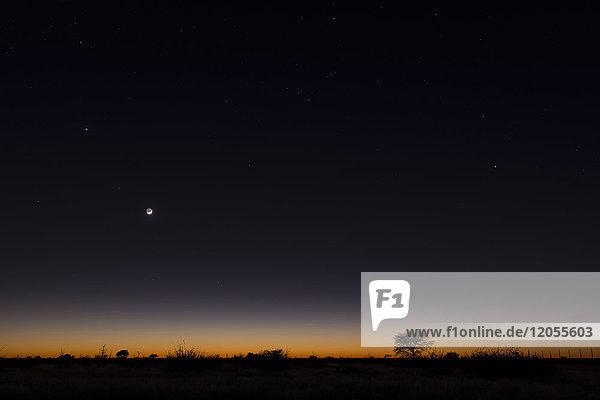 Namibia  Region Khomas  bei Uhlenhorst  Astrofoto  RIsing moon und Planet Venus über einem glühenden Savannenhorizont