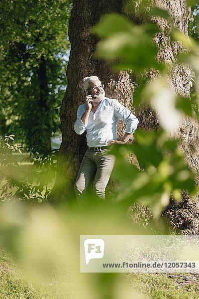Lächelnder reifer Mann auf dem Handy  der sich gegen den Baum lehnt.