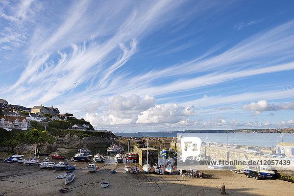Großbritannien  England  Cornwall  Newquay  Hafen