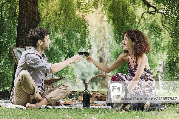 Pärchen mit Hund beim Picknick im Park beim Rotweintrinken