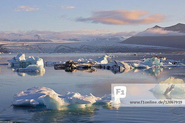 Icebergs in Jokulsarlon Glacier Lagoon during a sunrise  Austurland  Eastern Iceland  Iceland.