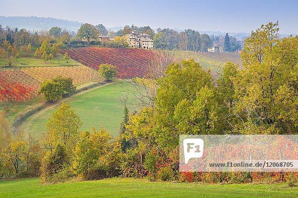The countryside near Castelvetro  Modena Province  Emilia Romagna  Italy.