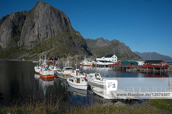 View of Hamnoya Harbour  Lofoten Islands  Nordland  Norway  Scandinavia  Europe