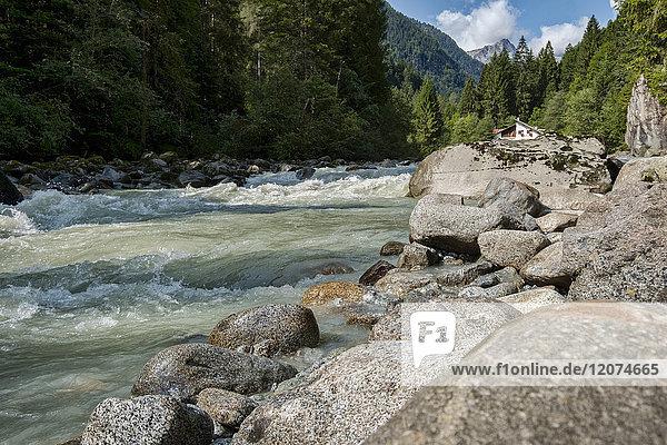 River Sarca and Adamello mountain range  Genova Valley  Trentino  Italy  Europe