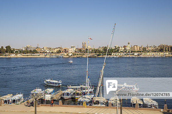 View of River Nile and Luxor Temple  Luxor  Egypt  North Africa  Africa