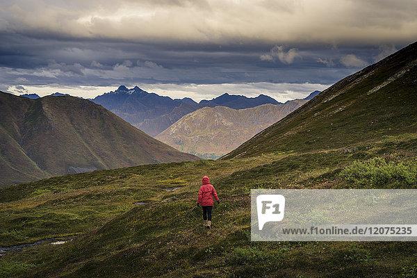 Lone hiker walks into Alaskan wilderness  Alaska  United States of America  North America