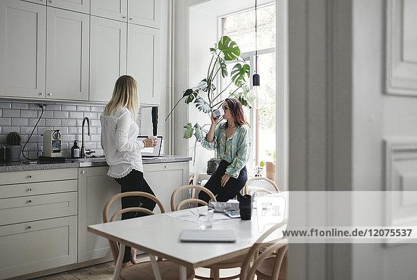 Weibliche Mitarbeiter bei der Arbeit in der Küche zu Hause bei Getränken