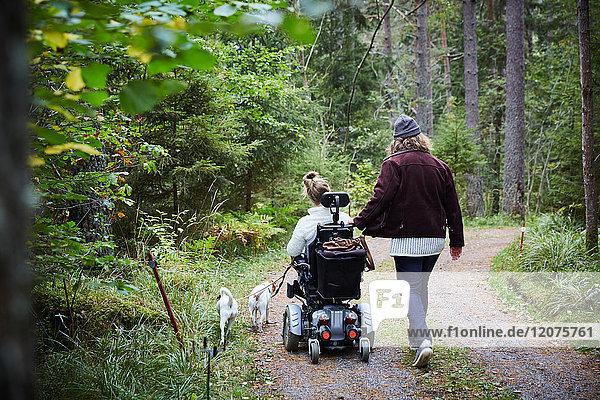 Rückansicht des Hausmeisters mit behinderter Frau und Hund im Wald