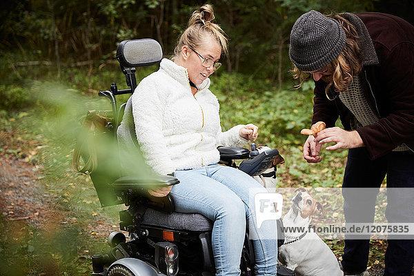 Behinderte Frau im Rollstuhl mit Blick auf Hausmeisterin mit Pilz im Wald