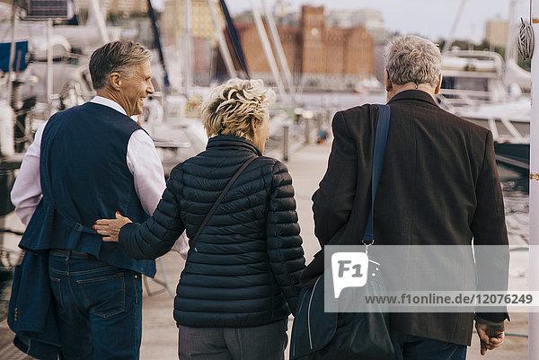 Rückansicht von älteren Freunden in warmer Kleidung  die auf dem Pier spazieren gehen.
