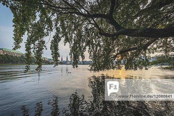 Germany  Hamburg  Binnenalster lake at sunset