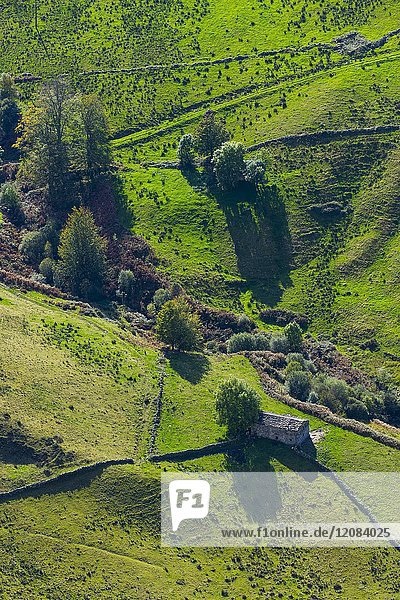 Aerial view. Cabañas Pasiegas and meadows  Miera Valley  Valles Pasiegos  Cantabria  Spain  Europe.