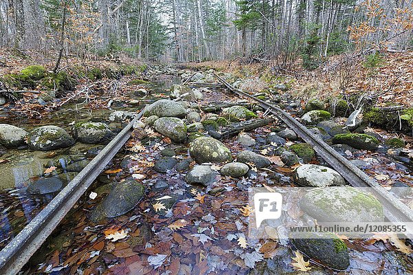 Remnants of an abandoned spur line of the Wild River Railroad in Bean's Purchase  New Hampshire. This was a logging railroad in operation from 1891-1904.