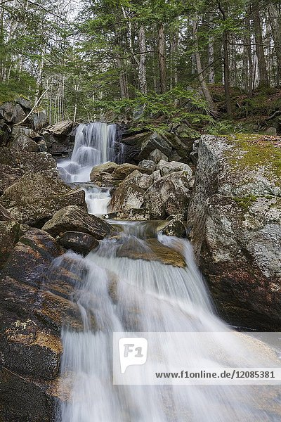 Cascade on Whitehouse Brook in Franconia Notch of Lincoln  New Hampshire on a spring day. This cascade is just below where the Appalachian Trail (Cascade Brook Trail) crosses Whitehouse Brook.