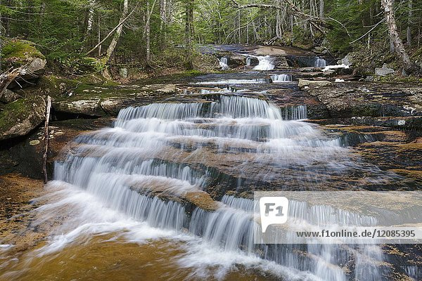 Cascade on Whitehouse Brook in Franconia Notch of Lincoln  New Hampshire on a spring day.