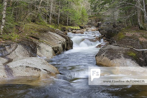 Cascade along the Pemigewasset River near the Flume Visitor Center in Franconia Notch State Park of Lincoln  New Hampshire during the spring months.