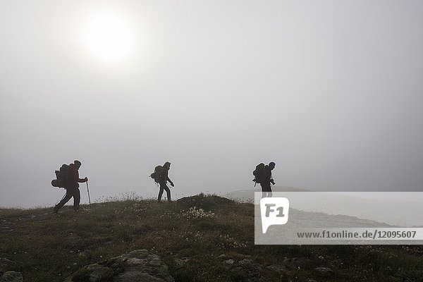 Hikers in the misty landscape at dawn Minor Valley High Valtellina Livigno Lombardy Italy Europe.
